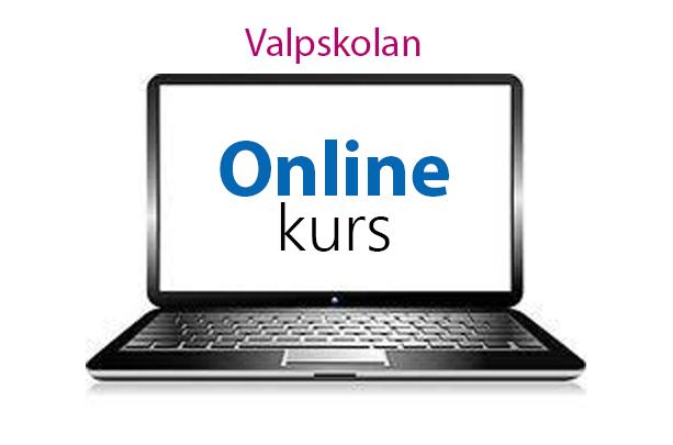 Valpskolan Online