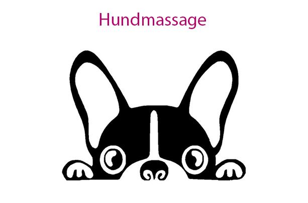 Hundmassage för hemmabruk