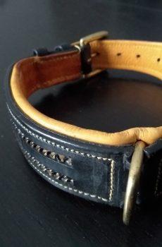läder halsband till hund med guld dekor