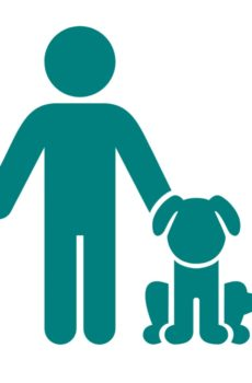 rallylydnad är vardagslydnad med glädje och samspel mellan hund och förare