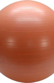 Balansbollsträning för hund